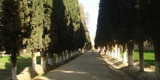 باغ نمله؛ یادگاری از عصر بابری , افغان تراول afghantravelaf